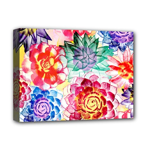 Colorful Succulents Deluxe Canvas 16  X 12   by DanaeStudio
