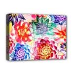 Colorful Succulents Deluxe Canvas 16  x 12
