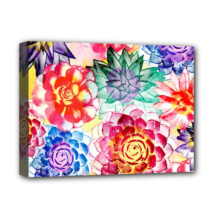 Colorful Succulents Deluxe Canvas 16  x 12