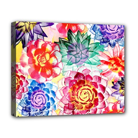Colorful Succulents Deluxe Canvas 20  X 16   by DanaeStudio