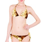Sparkling Lights Bikini Set