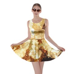 Sparkling Lights Skater Dress