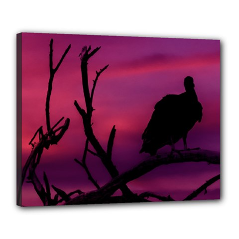 Vultures At Top Of Tree Silhouette Illustration Canvas 20  x 16