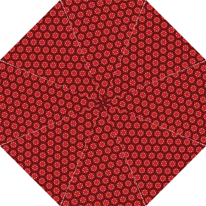 Red Passion Floral Pattern Hook Handle Umbrellas (Medium)