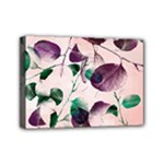 Spiral Eucalyptus Leaves Mini Canvas 7  x 5