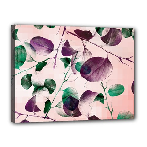 Spiral Eucalyptus Leaves Canvas 16  X 12  by DanaeStudio