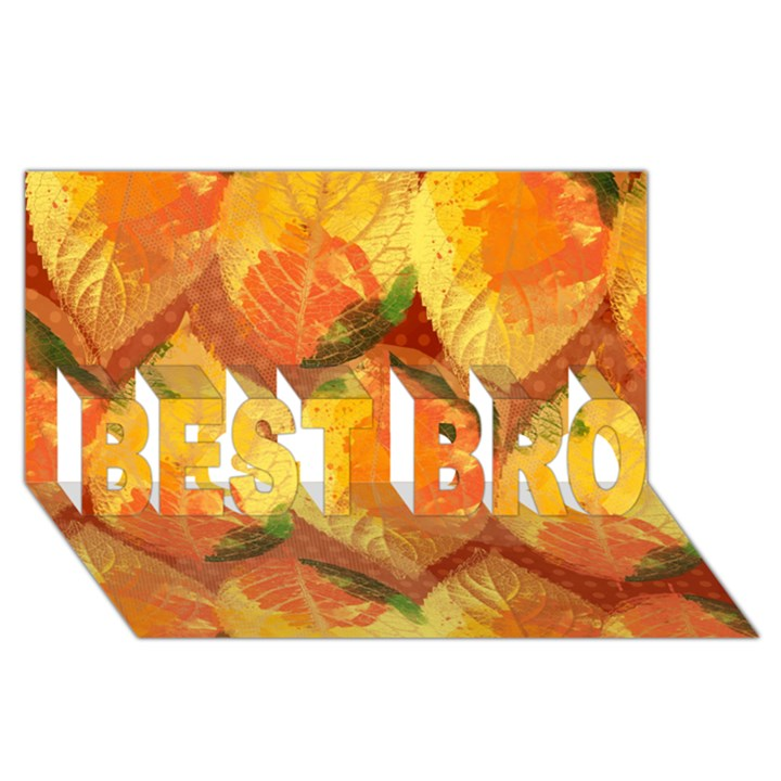 Fall Colors Leaves Pattern BEST BRO 3D Greeting Card (8x4)