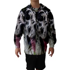 Great Dane harlequin  Hooded Wind Breaker (Kids) by TailWags