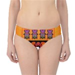 Clothing (20)6k,kk  O Hipster Bikini Bottoms