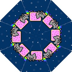 Nyan Cat Hook Handle Umbrellas (small) by Onesevenart