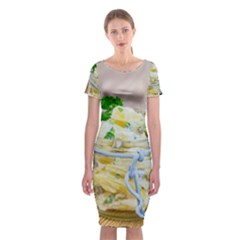 1 Kartoffelsalat Einmachglas 2 Classic Short Sleeve Midi Dress