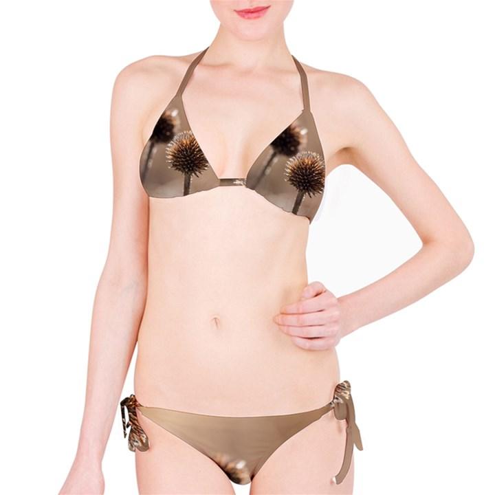 2  Verwelkte Kugeldistel Bikini Set