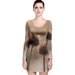 2  Verwelkte Kugeldistel Long Sleeve Velvet Bodycon Dress