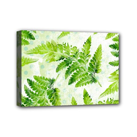 Fern Leaves Mini Canvas 7  X 5