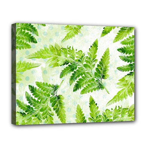 Fern Leaves Canvas 14  x 11