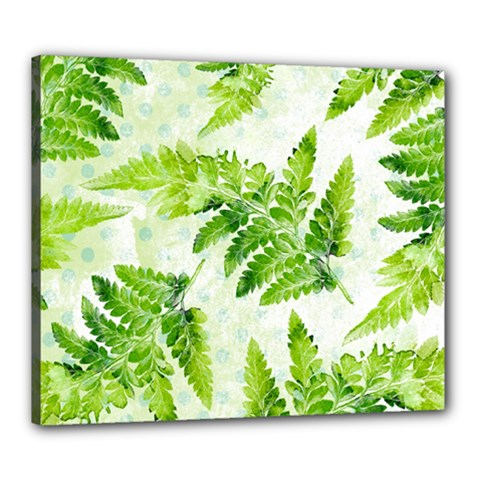 Fern Leaves Canvas 24  x 20