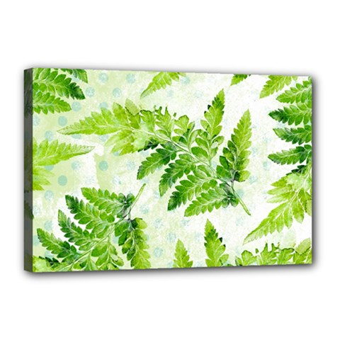 Fern Leaves Canvas 18  X 12
