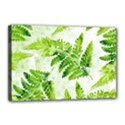 Fern Leaves Canvas 18  x 12  View1