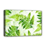 Fern Leaves Deluxe Canvas 18  x 12