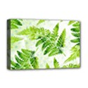 Fern Leaves Deluxe Canvas 18  x 12   View1