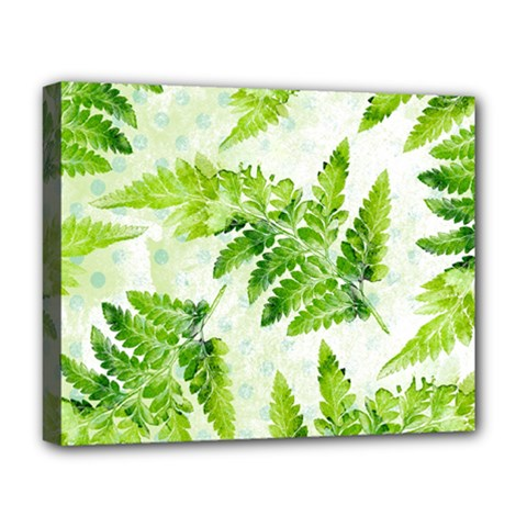 Fern Leaves Deluxe Canvas 20  X 16   by DanaeStudio
