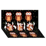 Halloween brown owls  SORRY 3D Greeting Card (8x4)