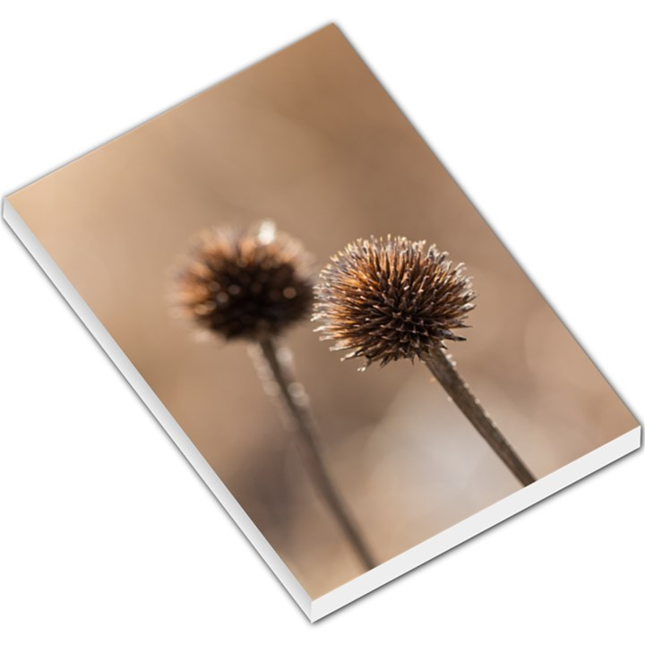 Withered Globe Thistle In Autumn Macro Large Memo Pads