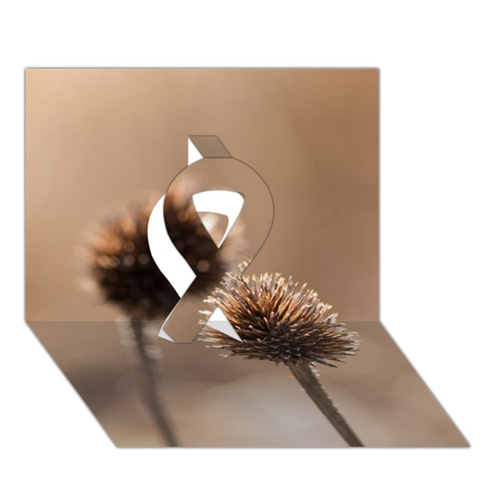 Withered Globe Thistle In Autumn Macro Ribbon 3D Greeting Card (7x5)