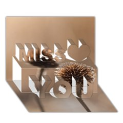 Withered Globe Thistle In Autumn Macro Miss You 3d Greeting Card (7x5)