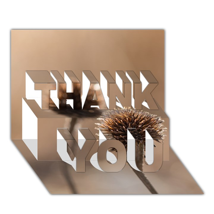 Withered Globe Thistle In Autumn Macro THANK YOU 3D Greeting Card (7x5)