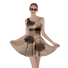 Withered Globe Thistle In Autumn Macro Skater Dress by wsfcow