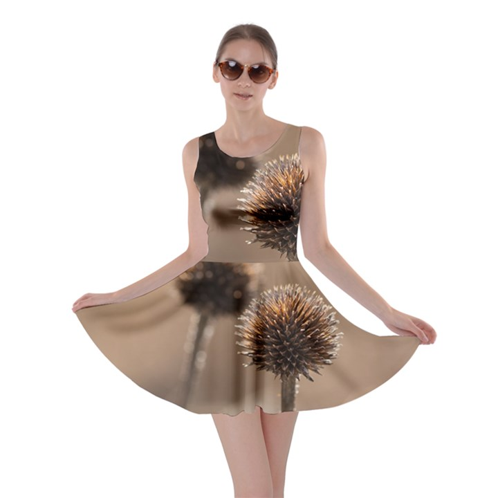 Withered Globe Thistle In Autumn Macro Skater Dress