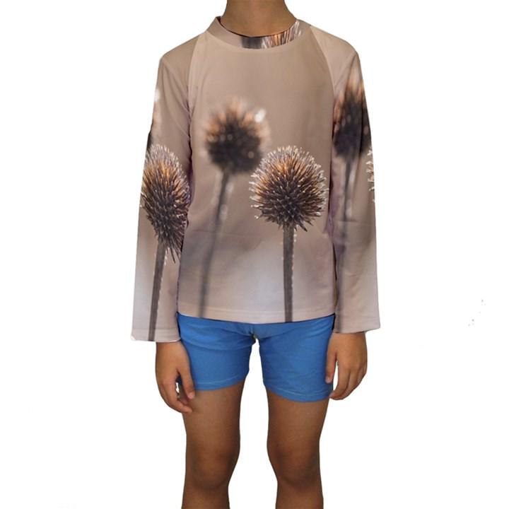 Withered Globe Thistle In Autumn Macro Kids  Long Sleeve Swimwear