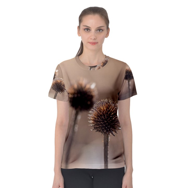 Withered Globe Thistle In Autumn Macro Women s Sport Mesh Tee