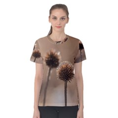 Withered Globe Thistle In Autumn Macro Women s Cotton Tee