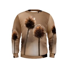 Withered Globe Thistle In Autumn Macro Kids  Sweatshirt by wsfcow