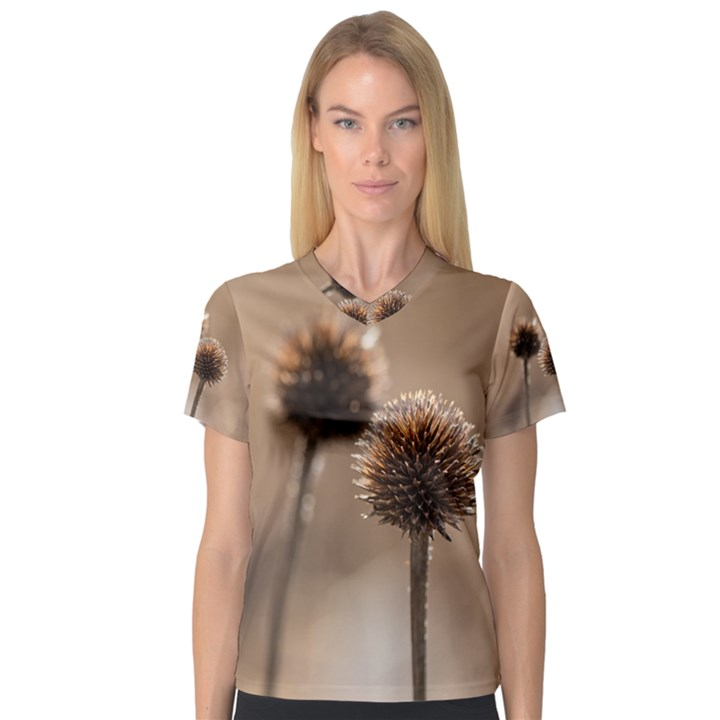 Withered Globe Thistle In Autumn Macro Women s V-Neck Sport Mesh Tee