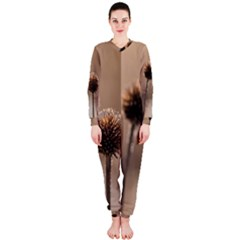 Withered Globe Thistle In Autumn Macro Onepiece Jumpsuit (ladies)