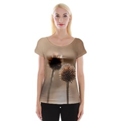 Withered Globe Thistle In Autumn Macro Women s Cap Sleeve Top