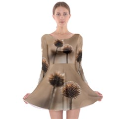 Withered Globe Thistle In Autumn Macro Long Sleeve Skater Dress