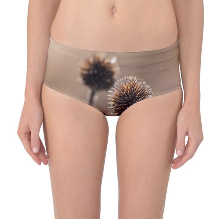 Withered Globe Thistle In Autumn Macro Mid-Waist Bikini Bottoms