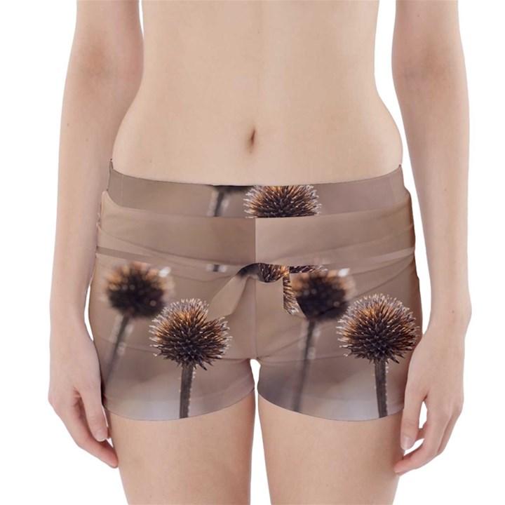 Withered Globe Thistle In Autumn Macro Boyleg Bikini Wrap Bottoms