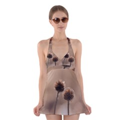 Withered Globe Thistle In Autumn Macro Halter Swimsuit Dress