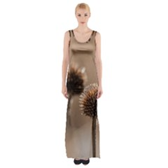Withered Globe Thistle In Autumn Macro Maxi Thigh Split Dress