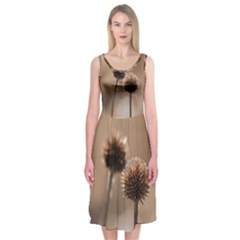 Withered Globe Thistle In Autumn Macro Midi Sleeveless Dress