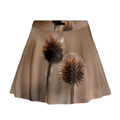 Withered Globe Thistle In Autumn Macro Mini Flare Skirt