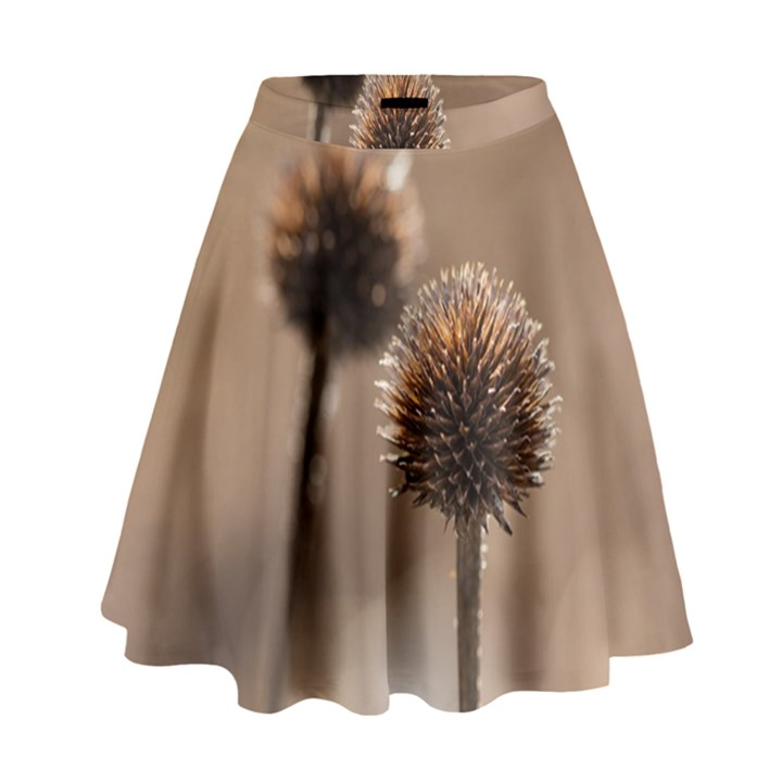 Withered Globe Thistle In Autumn Macro High Waist Skirt