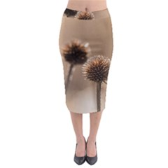 Withered Globe Thistle In Autumn Macro Midi Pencil Skirt