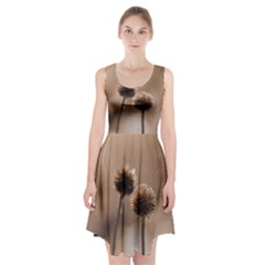 Withered Globe Thistle In Autumn Macro Racerback Midi Dress