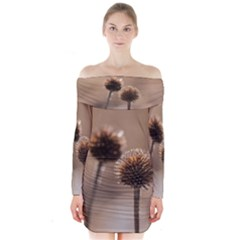 Withered Globe Thistle In Autumn Macro Long Sleeve Off Shoulder Dress by wsfcow